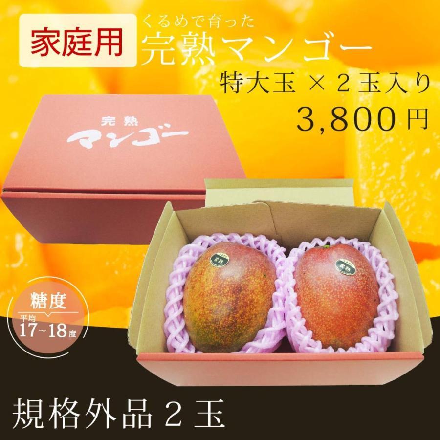 【規格外品】特大玉×2玉入り 家庭用完熟マンゴー|kurashige-nouen