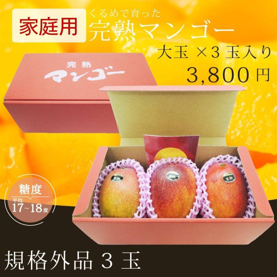 【規格外品】大玉×3玉入り 家庭用完熟マンゴー|kurashige-nouen