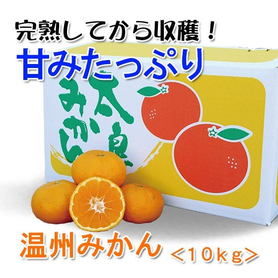 【みかん】温州ミカン 家庭用10kg箱【完熟】|kureme