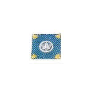 ふくさ(亀房)/塩瀬(並)鯨尺1.4尺(表紋·裏名前)