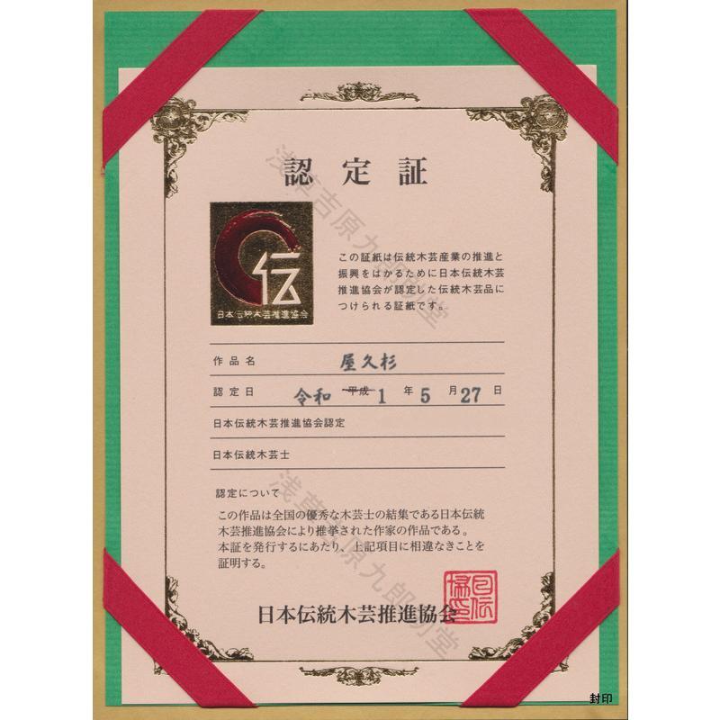 【呪い返しの刀印護符】陰陽師に伝わる財布などにいれるお守り (北極紫微大帝六十四化星秘符) kurosukedou 11