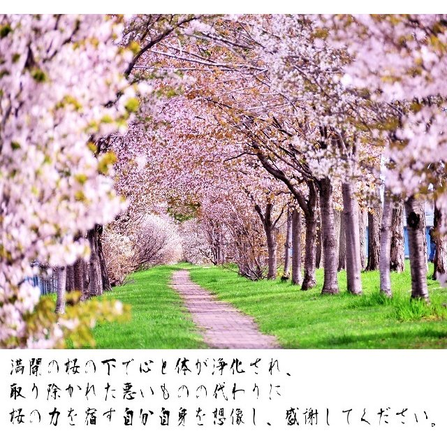 【祟りを祓う刀印護符】 鎮宅七十二霊符・たたり祓いのお守り  kurosukedou 11