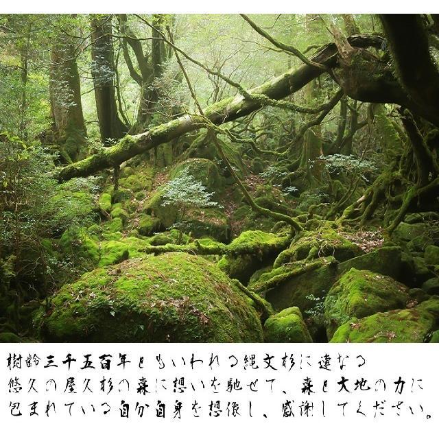 【祟りを祓う刀印護符】 鎮宅七十二霊符・たたり祓いのお守り  kurosukedou 12