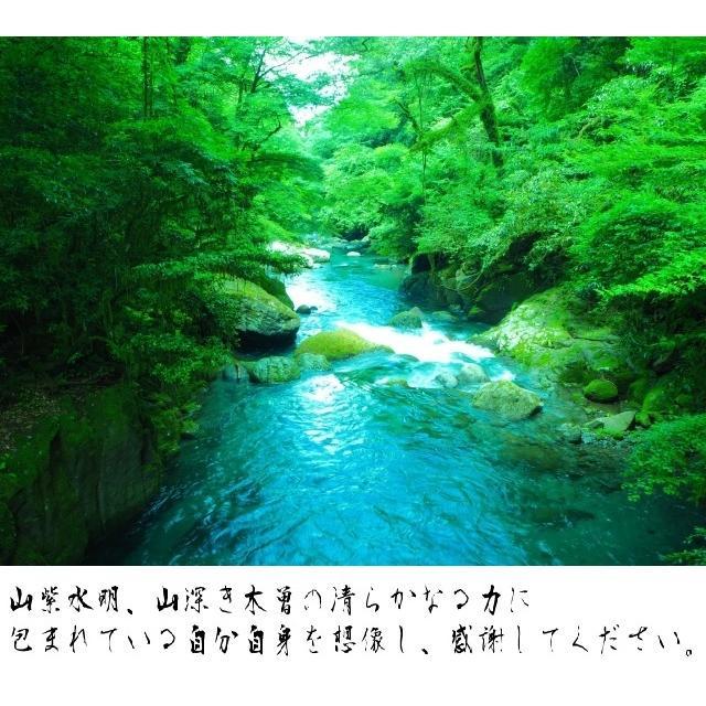 【祟りを祓う刀印護符】 鎮宅七十二霊符・たたり祓いのお守り  kurosukedou 10