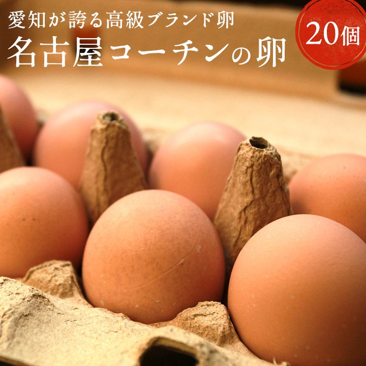 卵 20個 タマゴ たまご 名古屋コーチンの卵 【20個入り(18個+破卵保障2個)】櫛田養鶏場 養鶏場直送 超新鮮 愛知県産 ブランド