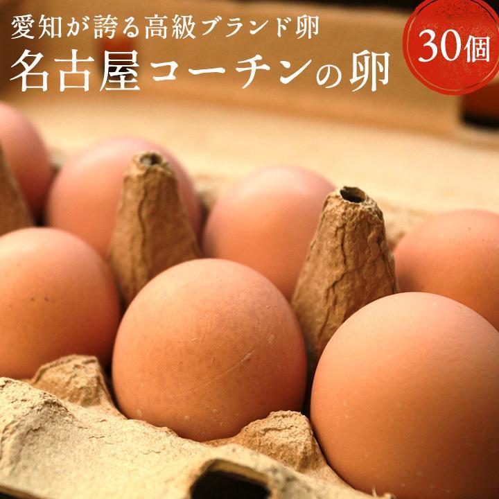 卵 30個 タマゴ たまご 名古屋コーチンの卵 【30個入り(27個+破卵保障3個)】櫛田養鶏場 養鶏場直送 超新鮮 愛知県産 ブランド