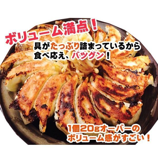 うまいもん空海 「遠州浜松餃子」 60個 (3パック小分け容器入り) ボリューム満点!の1.2kgオーバー!|kuukai1|02