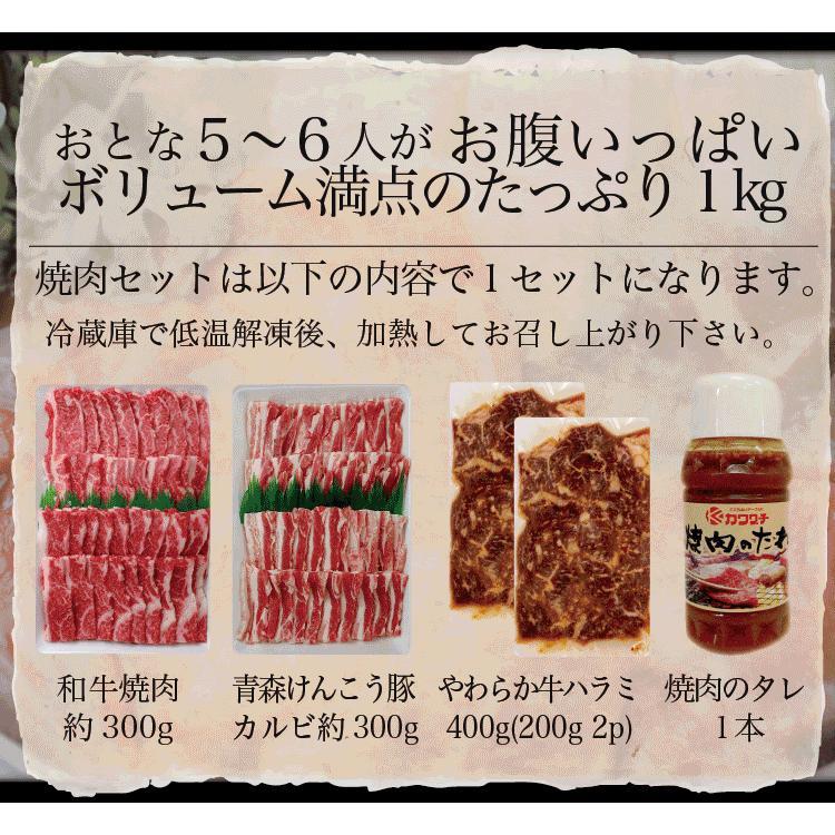 肉 焼肉 焼肉セット 1kg 和牛 入 | 送料無 | 3種盛 国産 バーべキュー BBQ 訳あり|kwgchi|11