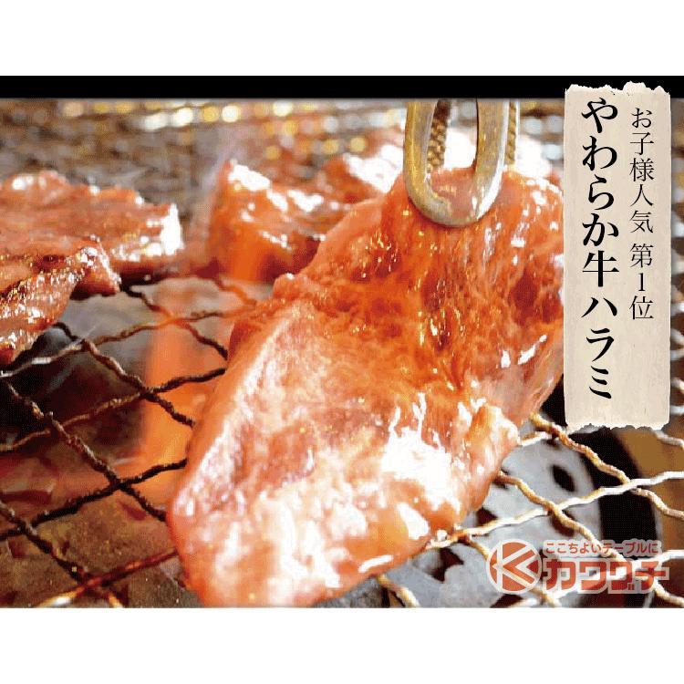 肉 焼肉 焼肉セット 1kg 和牛 入 | 送料無 | 3種盛 国産 バーべキュー BBQ 訳あり|kwgchi|07