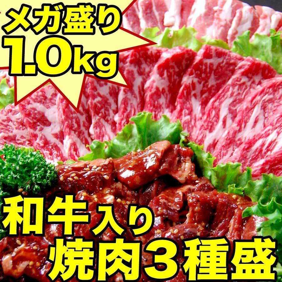 お歳暮 ギフト 焼肉 福袋 1kg   肉 3種盛 焼肉セット 国産牛 訳あり ハラミ 豚 カルビ バーべキュー kwgchi