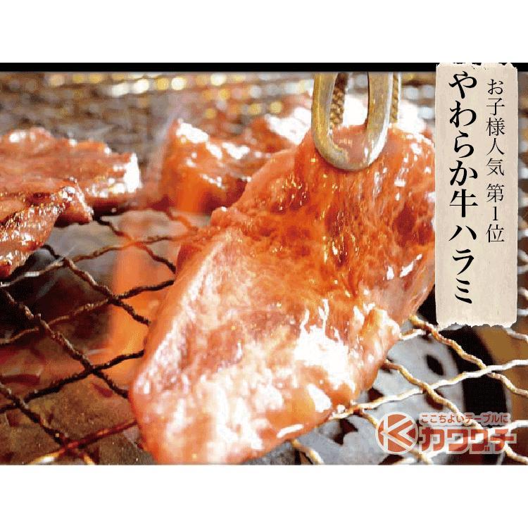 お歳暮 ギフト 焼肉 福袋 1kg   肉 3種盛 焼肉セット 国産牛 訳あり ハラミ 豚 カルビ バーべキュー kwgchi 11