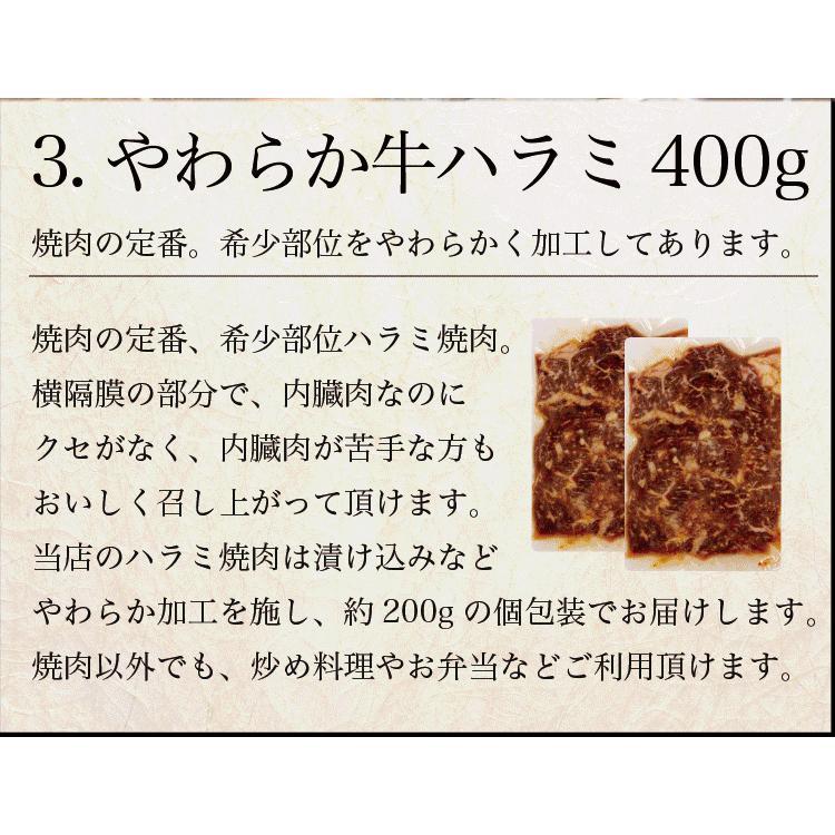 お歳暮 ギフト 焼肉 福袋 1kg   肉 3種盛 焼肉セット 国産牛 訳あり ハラミ 豚 カルビ バーべキュー kwgchi 12