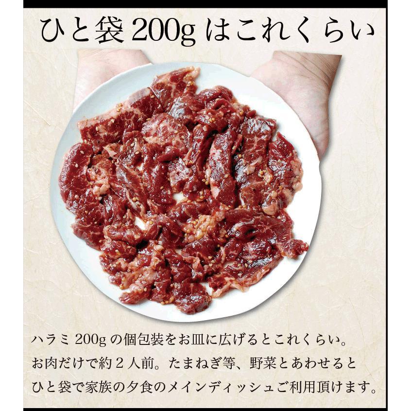 お歳暮 ギフト 焼肉 福袋 1kg   肉 3種盛 焼肉セット 国産牛 訳あり ハラミ 豚 カルビ バーべキュー kwgchi 13