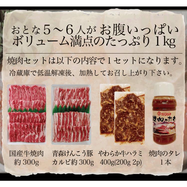 お歳暮 ギフト 焼肉 福袋 1kg   肉 3種盛 焼肉セット 国産牛 訳あり ハラミ 豚 カルビ バーべキュー kwgchi 15