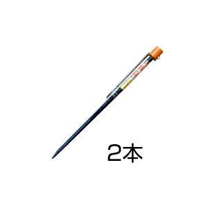 穴掘り器「下穴明け杭 小(22mm) 2本」