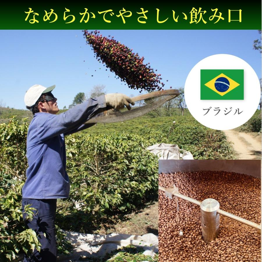 コーヒー豆 コーヒー 珈琲 100g ブラジル モンテアレグレ|kyoto-coffee