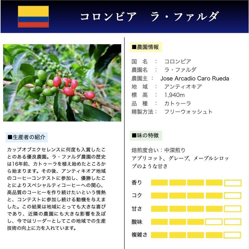 コーヒー豆 コーヒー 珈琲 100g  コロンビア ラ・ファルダ|kyoto-coffee|02
