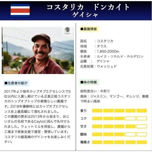 コーヒー豆 コーヒー 珈琲 100g Cup of Excellence コスタリカ2位 ドンカイト ゲイシャ|kyoto-coffee|02
