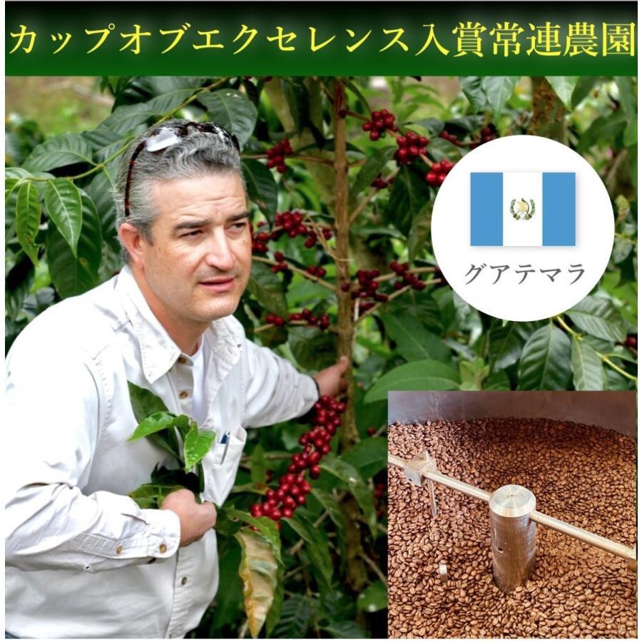 コーヒー豆 コーヒー 珈琲 100g×3点 初めての方へ飲み比べセット ブラジル・グアテマラ・鞍馬ブレンド kyoto-coffee 03