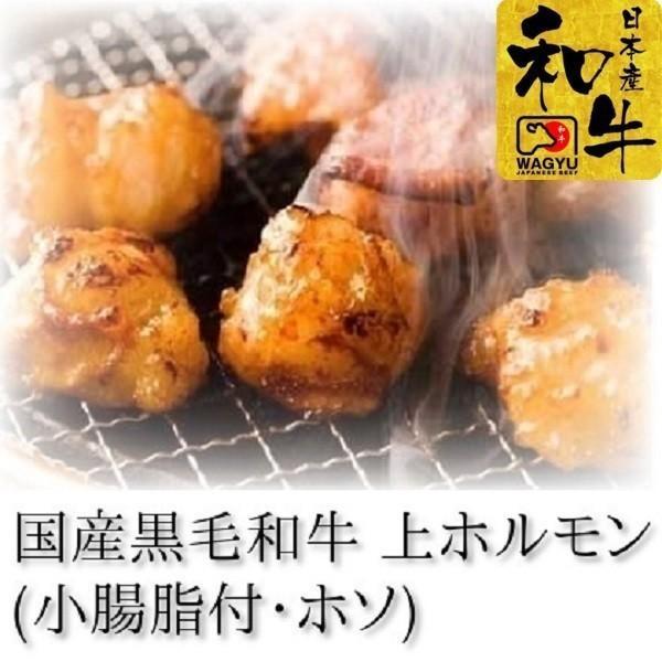 ホルモン 500g もつ鍋 焼き肉 牛ホルモン 国産 和牛|kyoto1129|02