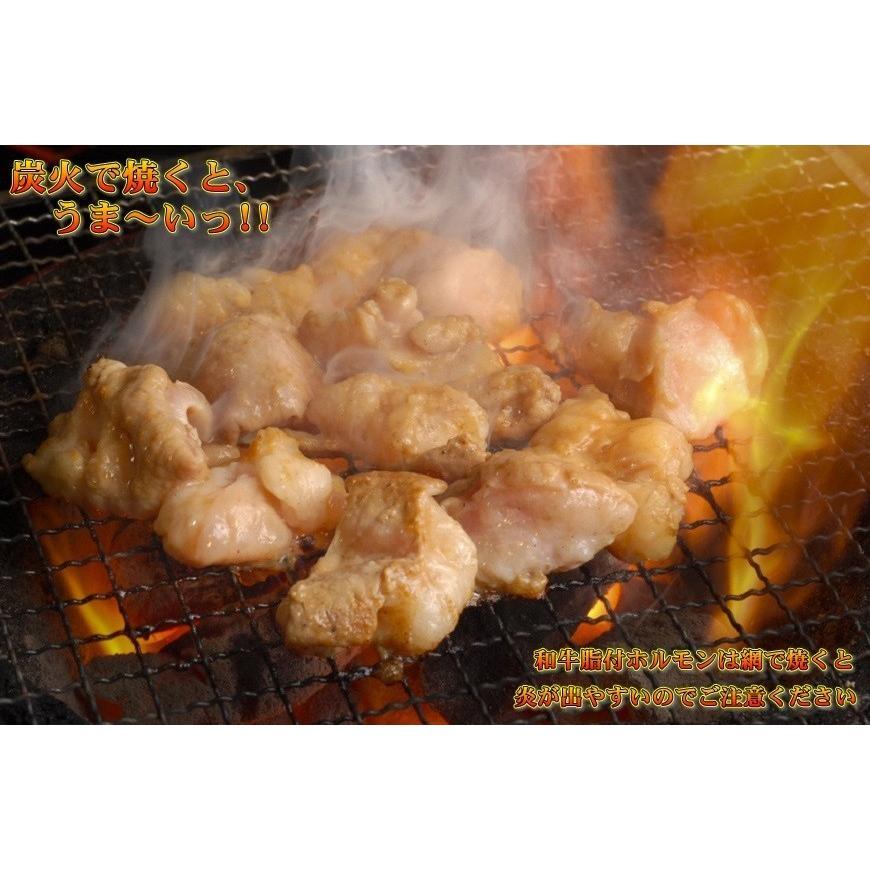 ホルモン 500g もつ鍋 焼き肉 牛ホルモン 国産 和牛|kyoto1129|05