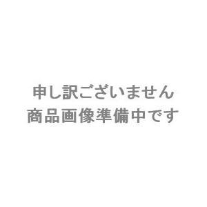 (直送品)サカエ SAKAE ツーリングワゴン(スーパースペシャルワゴンタイプ) SSW-24RBLC