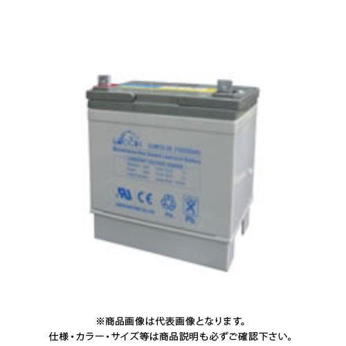マイト工業 バッテリー(メンテナンスフリー) WB-3M2