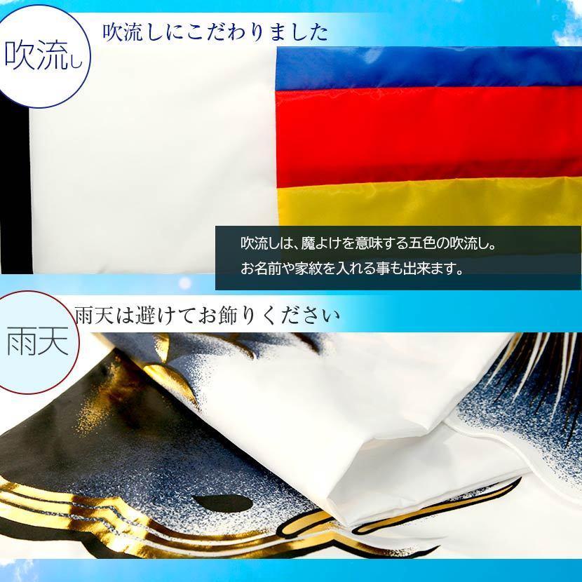 鯉のぼり こいのぼり ベランダ 天龍 1.2m 家紋入れ・名前入れ可能吹流し kyuhodo 05
