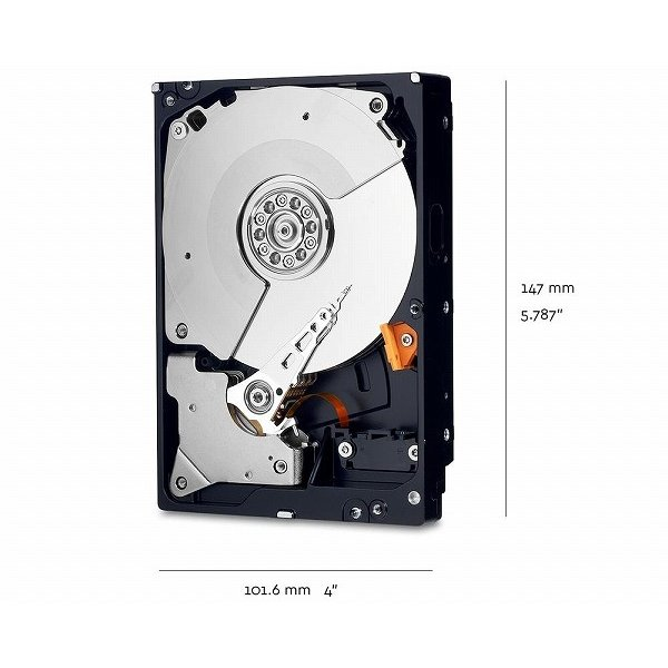 Western Digital WD BLACK HDD 1TB WD10JPLX ウエスタンデジタル ハードドライブ|lamp|02
