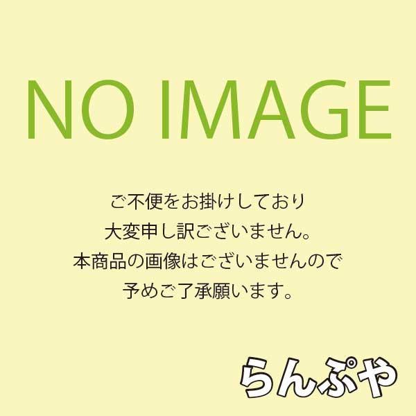 HIDランプ アイ NX形ナトリウムランプ NX90 岩崎電気