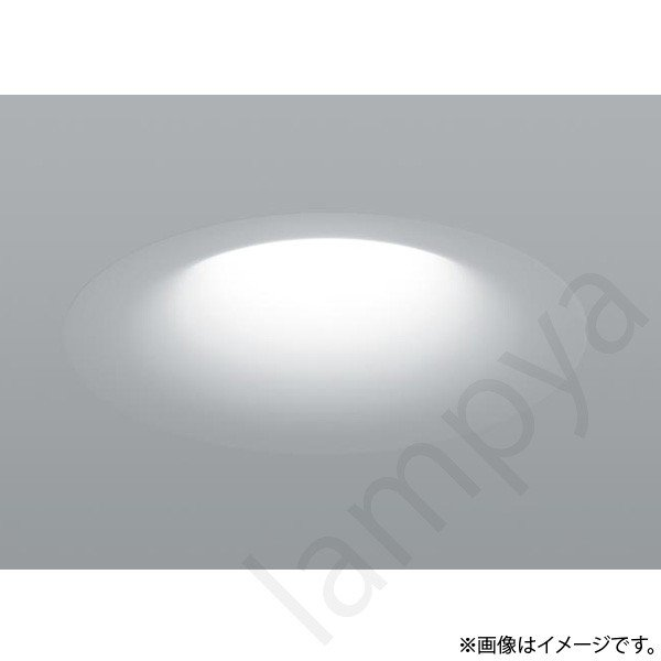 LEDダウンライト NYY56599 DK9(NYY56599DK9) パナソニック