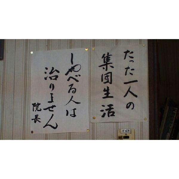 『三聖病院 宇佐療法という宇宙』【DVD】(森田療法) landscape-store 05