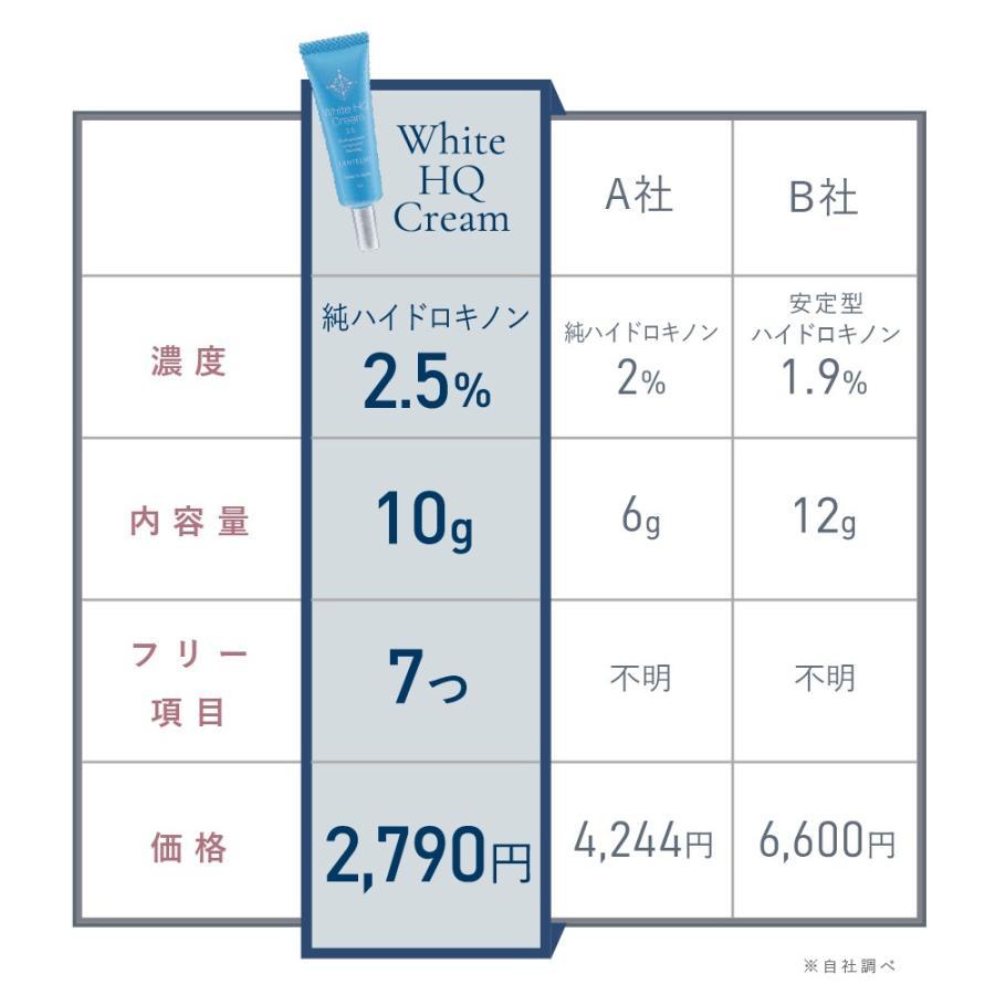 純 ハイドロキノン 2.5%配合 クリーム ハイドロキノン ランテルノ ホワイトHQクリーム レチノール 1本  1本 lantelno-store 04