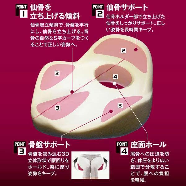 仙骨クッション 仙律 骨盤 猫背 姿勢 背筋 サポート 腰痛 クッション 座椅子 デスクワーク 腰の負担を軽減するクッション オフィスチェア 3D 高反発 送料無料 le-cure 03