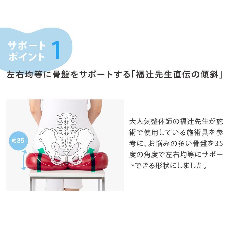 福辻式 骨盤クッション ツインフリー デスクワーク 腰痛 骨盤 クッション 床 オフィス 骨盤サポート 美姿勢 長時間 疲れない 座布団 あすつく 送料無料 ギフト|le-cure|09
