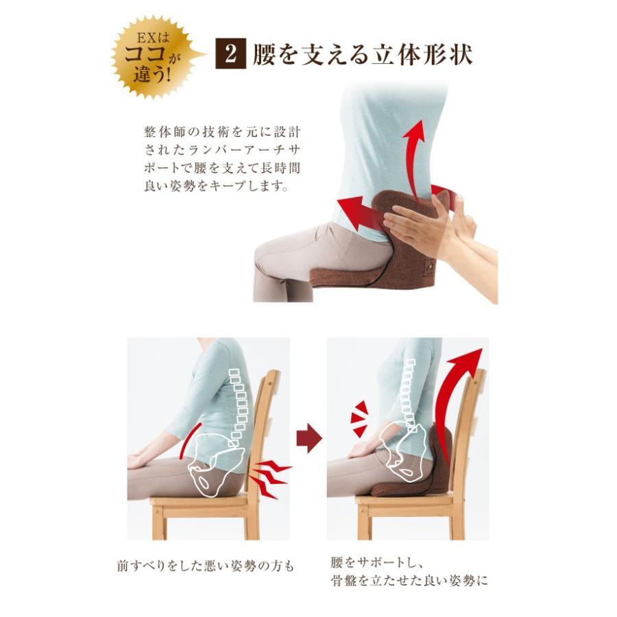 腰痛クッション 馬具マットプレミアムEX 椅子用馬具マット 腰痛対策|le-cure|06