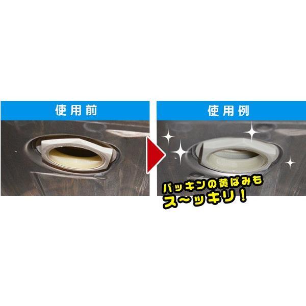 食洗機の掃除 食洗機庫内の一発洗浄 食洗機クリーナー 定形外・送料無料 le-cure 05