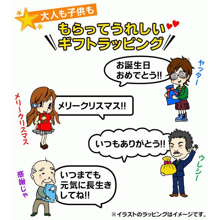 ゴキブリ忌避剤 ゴキよけゲル 室内用 ゴキブリを寄せ付けない 日本製 あすつく|le-cure|05