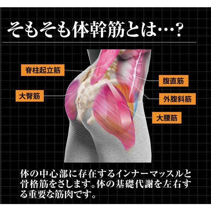 体幹筋エクサインソール ツインボール ダイエットインソール 中敷き 極薄 レディース 体幹トレーニング 履くだけ ダイエット ウォーキング|le-cure|07