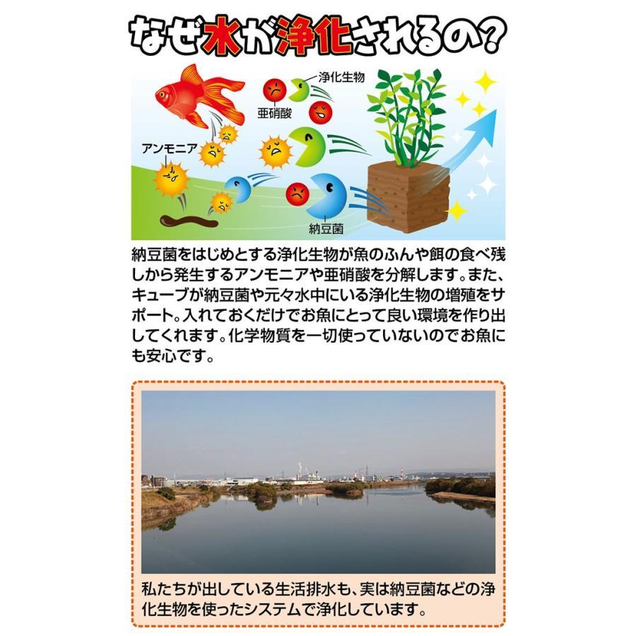 掃除 水槽 ろか材 お魚天国バイオキューブ 水槽の水換え 金魚鉢 セラミック ろ過材 フィルター 濾過材|le-cure|02