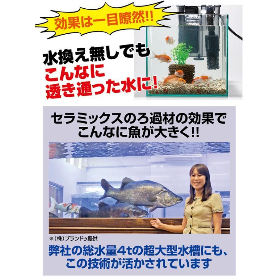 掃除 水槽 ろか材 お魚天国バイオキューブ 水槽の水換え 金魚鉢 セラミック ろ過材 フィルター 濾過材|le-cure|05