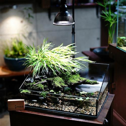 植物育成灯 アクアリウム テラリウム パルダリウム 太陽光LED 水草育成 観葉植物 BARREL AMATERAS(アマテラス) LED 20W BARREL leafs 04