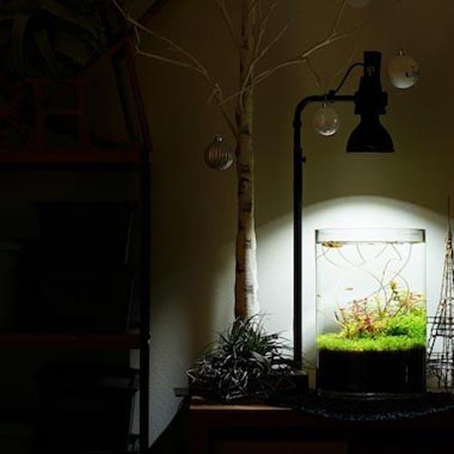 植物育成灯 アクアリウム テラリウム パルダリウム 太陽光LED 水草育成 観葉植物 BARREL AMATERAS(アマテラス) LED 20W BARREL leafs 08
