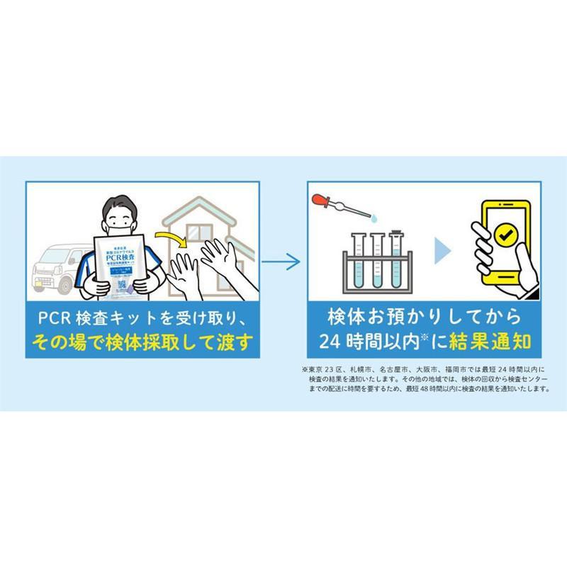 コロナ検査キット 研究用 日本製 送料無料 5個セット 抗原検査ペン型デバイス Toamit 抗原検査キット 唾液 PCR検査キット  精度99.4%以上 変異株対応 東亜産業|leathercity|10