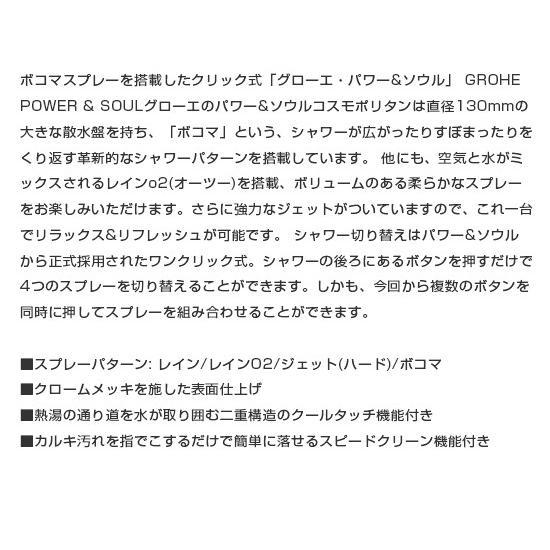 GROHE グローエ Power&Soul 130 Hand shower 4+ sprays パワーアンドソウル ハンドシャワー 130mm カラー:Misty Slate シャワーヘッド [27672TN0]|leben|07