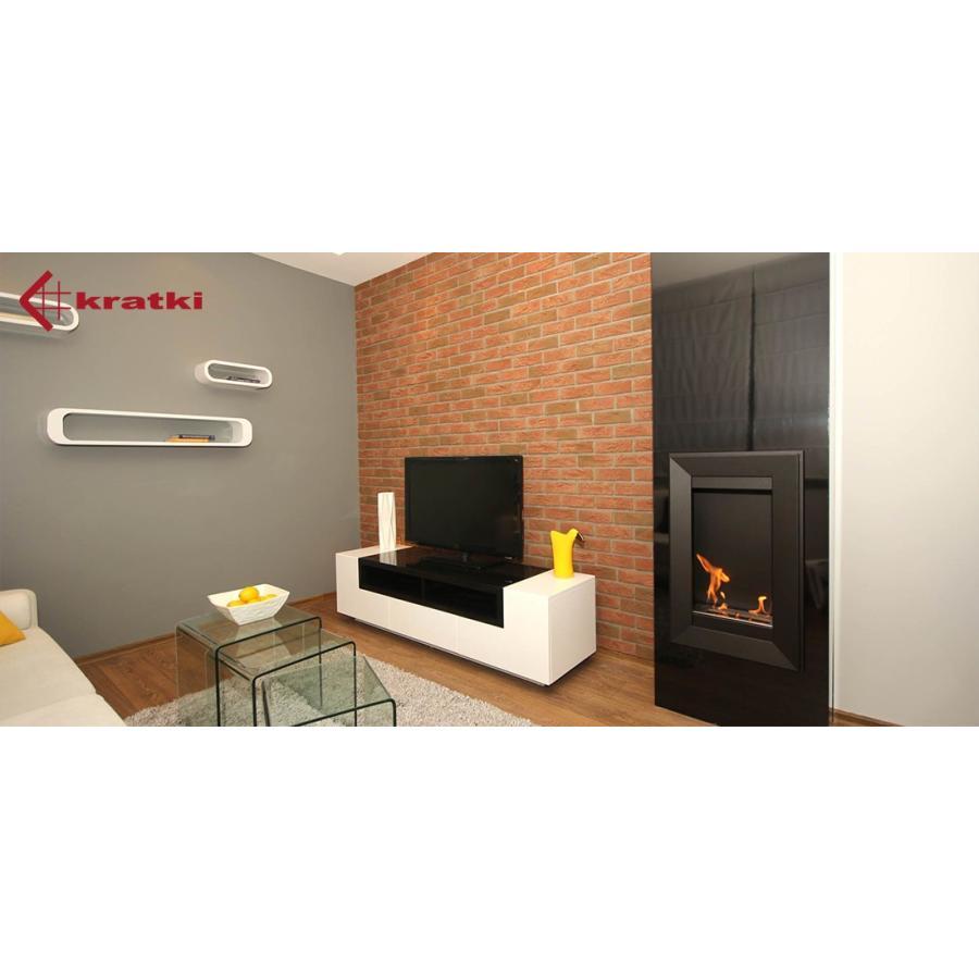 バイオエタノール暖炉用 KRATKI(ポーランド) クラトキ CHARLIE2 チャーリー2 専用 ガラスシールド ガラススクリーン 壁掛け型暖炉|leben|04