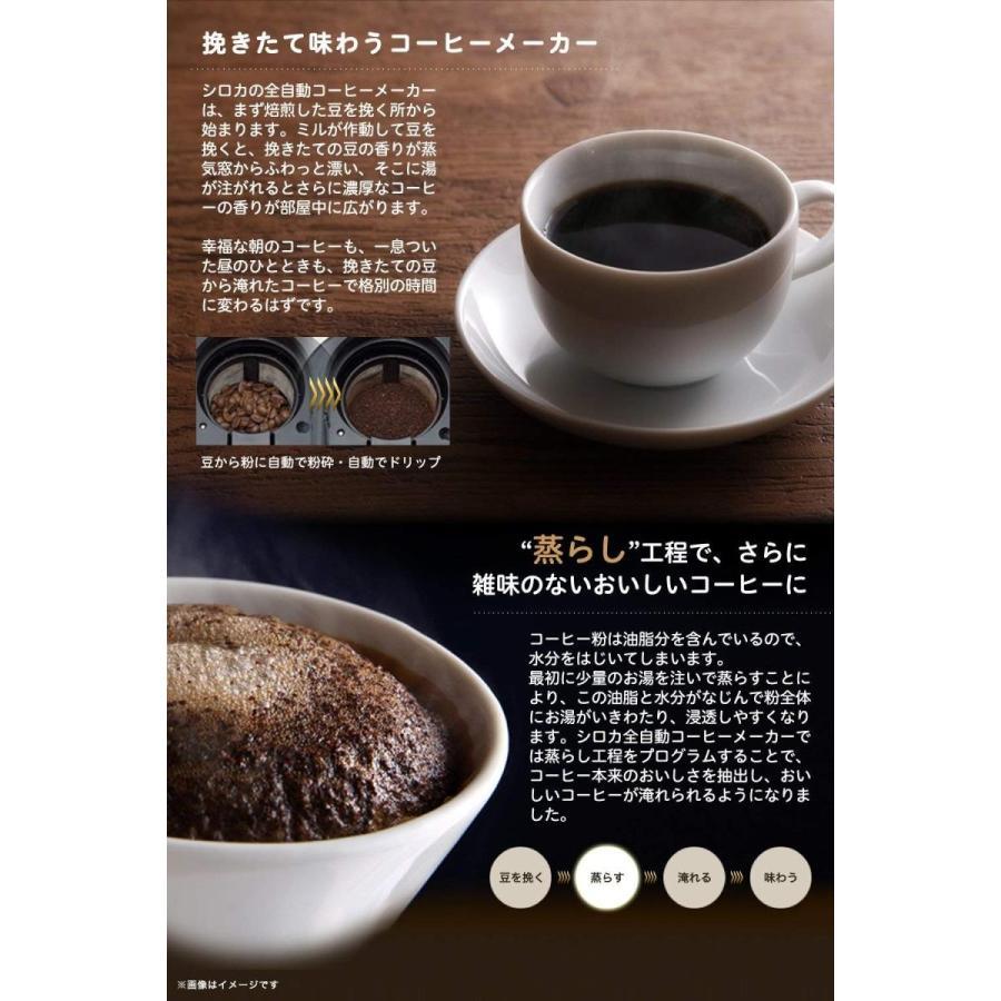 siroca 全自動コーヒーメーカー SC-A221 ステンレスシルバー 新ブレード搭載 [ガラスサーバー/静音/粒度均一/ミル内蔵4段階/豆・粉両対応/蒸らし]|lechantilly|03