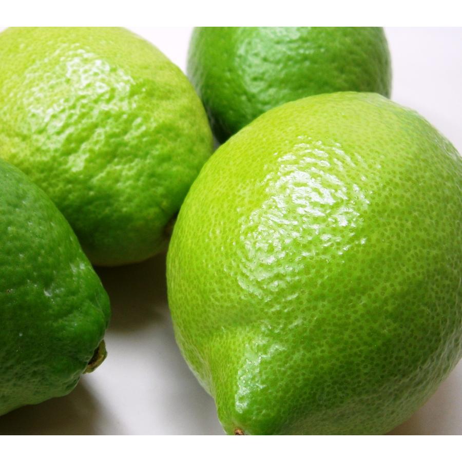 広島県産レモン 送料無料激安祭 当店一番人気 A 2kg