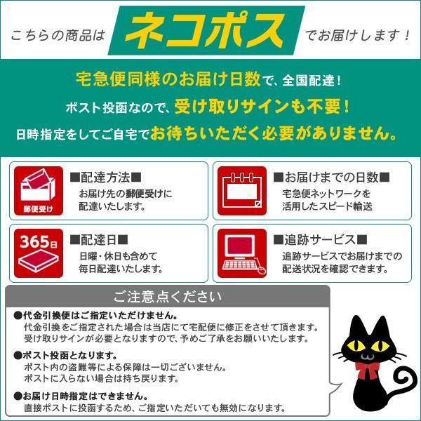 ネコポス メニコン ハードレンズケース ×1個 lens-deli 02