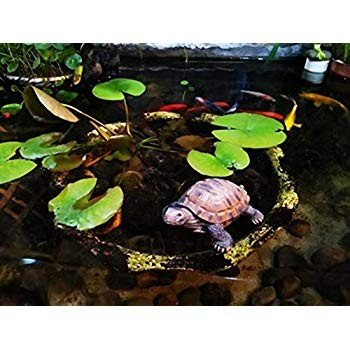 donau Garden Statue Lawn Ornaments - Cute Turtles Figurines Polyresin